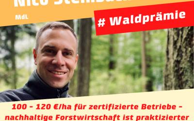 Die Waldprämie kommt – 100 – 120 €/ha für zertifizierte Betriebe in 2020/2021